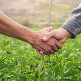 Why have a farming partnership agreement?