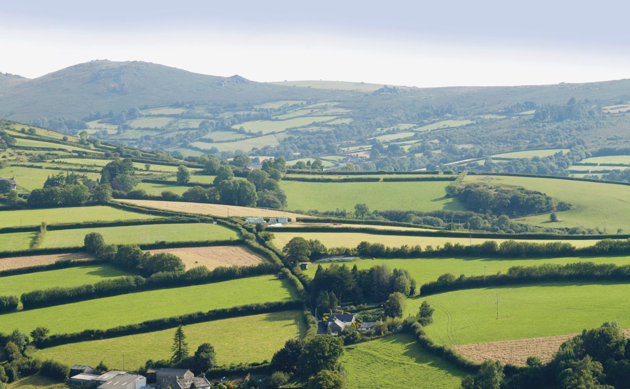 Report on domestic abuse in rural areas is 'shocking but not surprising'